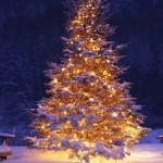 153259_oswietlona-choinka-fotele-nieg-zima